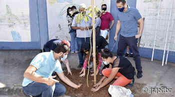 Novo Horizonte também tem plantio de árvores | JORNAL DA REGIÃO - JORNAL DA REGIÃO - JUNDIAÍ