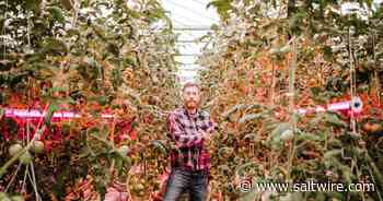Lawrencetown greenhouse operation steadies cash flow by letting its light shine | Saltwire - SaltWire Network