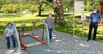 Neue Inklusionsschaukel im Stadtpark in Merzig - Saarbrücker Zeitung