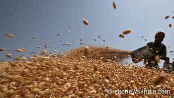 Pradhan Mantri Garib Kalyan Anna Yojna: 80 crore people to get free ration every month till Diwali