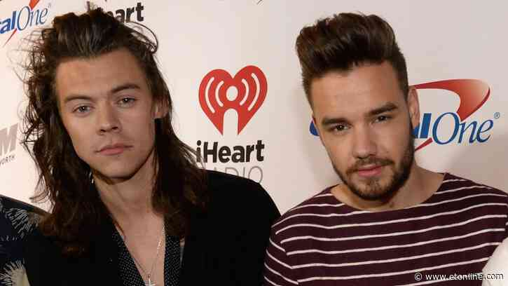 Liam Payne Says He'd Love to Do a One Direction Reunion After 'Lovely' Phone Call With Harry Styles - Entertainment Tonight