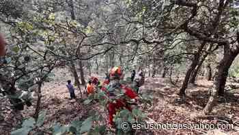 Hombre de 70 años cae a un barranco de la Sierra Fría; lo trasladan en helicóptero - Yahoo Noticias