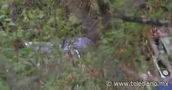 Cuajimalpa: Camión de Ruta 4 cae a barranco - Telediario CDMX