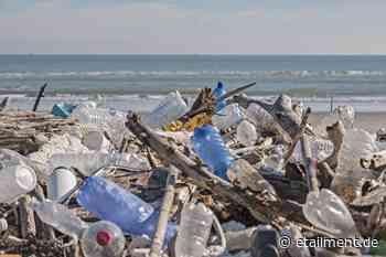 Nachhaltigkeit: Plattform gegen Plastik