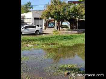 Gran pérdida de agua por la avenida Vélez Sarsfield, a seis cuadras de Sameep - Datachaco.com