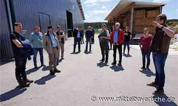 Spaziergang zwischen Freihöls und Asbach - Region Schwandorf - Nachrichten - Mittelbayerische