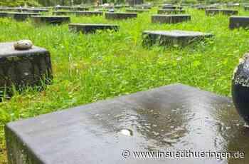 """Parkfriedhof Meiningen - Pflegefreie Gräber machen """"würdigen Eindruck"""" - inSüdthüringen"""