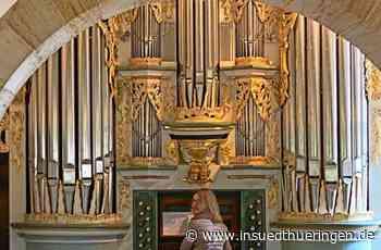 Serie im Jahr der Orgel - Eine Königin, die auf Genesung wartet - inSüdthüringen