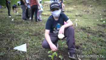 Sabaneta rinde tributo a víctimas del covid en el municipio - Telemedellín