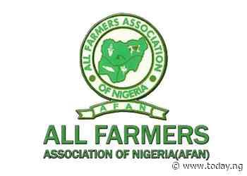 AFAN: Food crisis looms in Nigeria