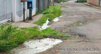 INDOLENCIA / Miles de litros de agua se pierden en Altagracia de Orituco - El Tubazo Digital