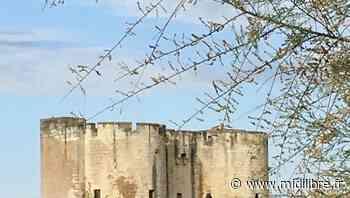 Départementales dans le Gard : le canton d'Aigues-Mortes, le territoire de toutes les convoitises ! - Midi Libre