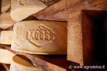 Bagòss di Bagolino, un formaggio dalla tradizione secolare - Agrodolce
