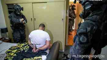 Weltweite Razzien gegen organisiertes Verbrechen: Mehr als 70 Festnahmen in Deutschland - Panorama - Gesellschaft - Tagesspiegel