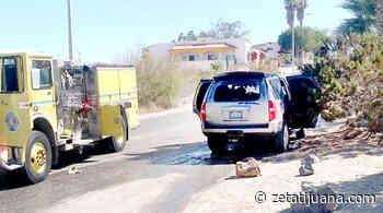 """""""Los Chapitos"""" en San Felipe - ZETA - Zeta"""