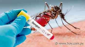 Reportaron nuevos casos de dengue en Yaguarón y Encarnación - Hoy
