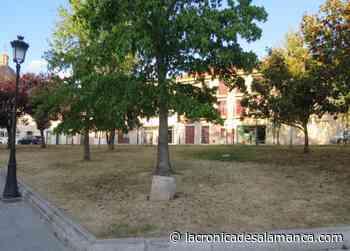 Jardín seco en la Vaguada de la Palma - La Crónica de Salamanca