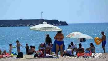 Prenotazione spiagge via app, la soddisfazione di CNA: «Speriamo in Numana e Porto Recanati» - AnconaToday
