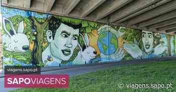 Matosinhos e Vila Nova de Gaia têm dois novos murais que alertam para a importância de preservar o ambiente - SAPO Viagens