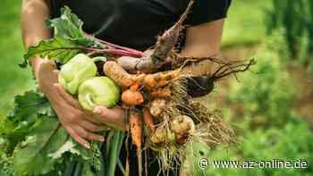 Ebstorfer Initiative will gemeinsam gärtnern - az-online.de