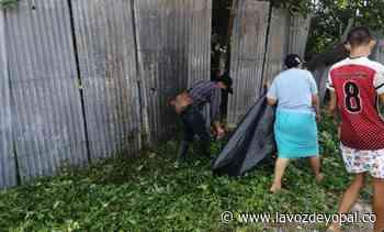 ¡Nunchía le apostó a la prevención y al Dengue lo dejó sin acción! - Noticias de casanare   La voz de yopal - La Voz De Yopal