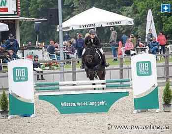 Pferdesport: Ammerländer starten auch in Höven - Nordwest-Zeitung