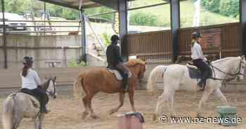 Pferdesport nur mit Einschränkungen möglich: So kämpfen sich Reiter aus der Krise - Region - Pforzheimer Zeitung