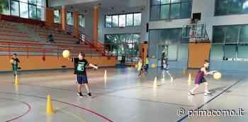 Pallacanestro giovanile tutto pronto per il Summer Basket Camp a Cabiate - Prima Como