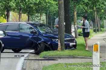 Auto botst tegen boom in Zutendaal (Zutendaal) - Het Nieuwsblad