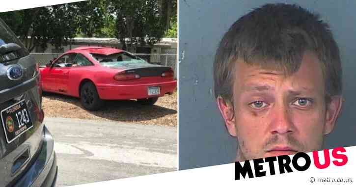 Man who 'dumped hit-and-run victim's body also beheaded ex-girlfriend's cats'