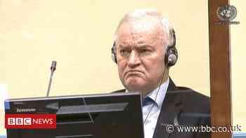 Srebrenica massacre: UN court rejects Mladic genocide appeal