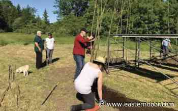 Living willow dome comes to life in Kahnawake - easterndoor.com