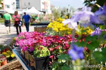 Merano Flower Festival: dal 18 al 20 giugno il risveglio della natura - Snap Italy