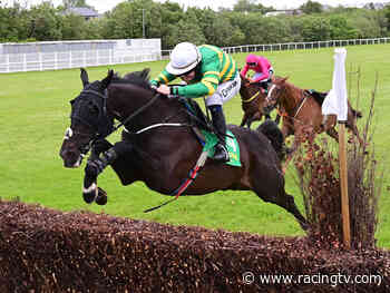 Darasso on a roll as Samcro fails to fire at Listowel - Racing TV