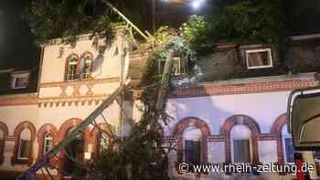 Wohnhaus durch mehrere umstürzende Bäume beschädigt - Kreis Cochem-Zell - Rhein-Zeitung