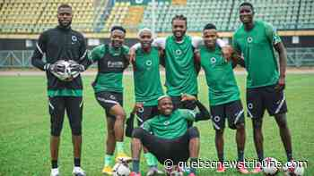 Laval advises Rohr to give Murphy, Oleinka and other new Super Eagles more playing time in the Cameroon friendly - QNT