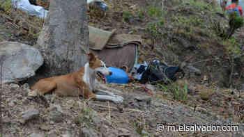 Fiscalía confirma hallazgo de cadáver de niño en Guatajiagua y sus restos devorados por aves de rapiña | Noticias de El Salvador - elsalvador.com - elsalvador.com