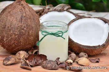 ¡Aprovecha el coco! Haz aceite, harina y manteca en casa - El Mercurio de Tamaulipas