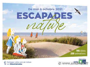Les dunes de Riva Bella Donné à la réservation vendredi 9 juillet 2021 - Unidivers