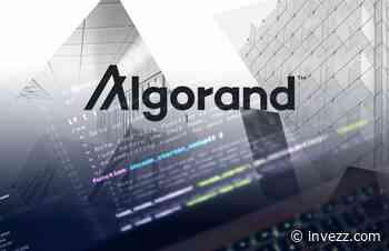 Die Algorand-Revolution: Ist ALGO die beste Blockchain, die man jetzt kaufen kann? - Invezz