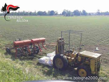 A Bentivoglio anziano gravemente ustionato mentre fa rifornimento di gasolio al trattore - Bologna 2000