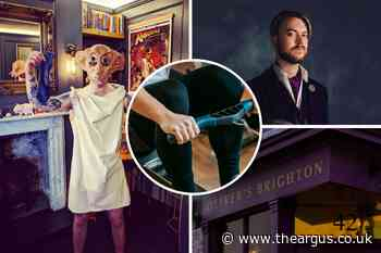 Harry Potter fan rowing for Pride dressed as loved character