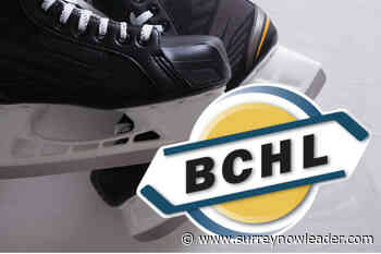 BCHL takes another step towards eliminating fighting – Surrey Now-Leader - Surrey Now Leader
