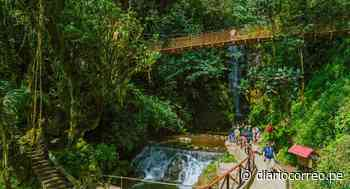 Selva Central y Oxapampa ofrecen destinos turísticos con altos niveles de bioseguridad - Diario Correo