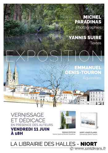 Exposition « Marais Poitevin » et « Niort lignes claires » Niort vendredi 11 juin 2021 - Unidivers