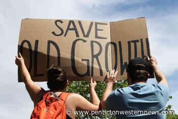 PHOTOS: Hundreds rally in Kelowna in support of Fairy Creek blockade – Penticton Western News - Penticton Western News