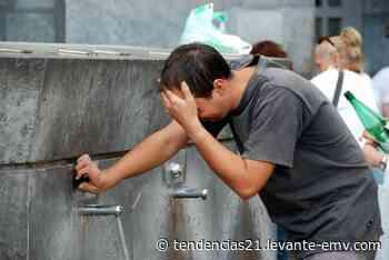 El agua de Lourdes actúa como placebo para los creyentes • Tendencias21 - Levante-EMV