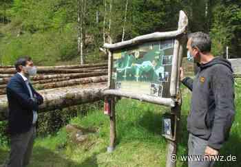 Schiltach: Hoffnung auf baldige Öffnung der Hirschgrund Zipline Area - Neue Rottweiler Zeitung online