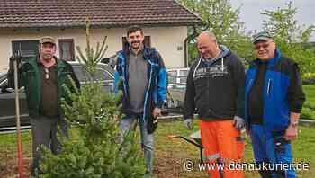Zandt: Neuer Baum am Kriegerdenkmal - Zandter Kameraden feiern Jubiläum ihrer Fahnenweihe - donaukurier.de