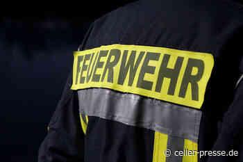 Brennender Baum in Lachendorf - Celler Presse - was Celle bewegt... - Celler Presse